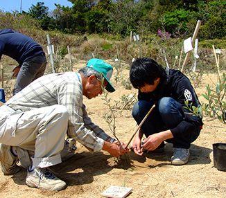 以種植百萬棵樹為目標