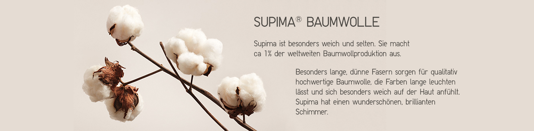 Supima Cotton