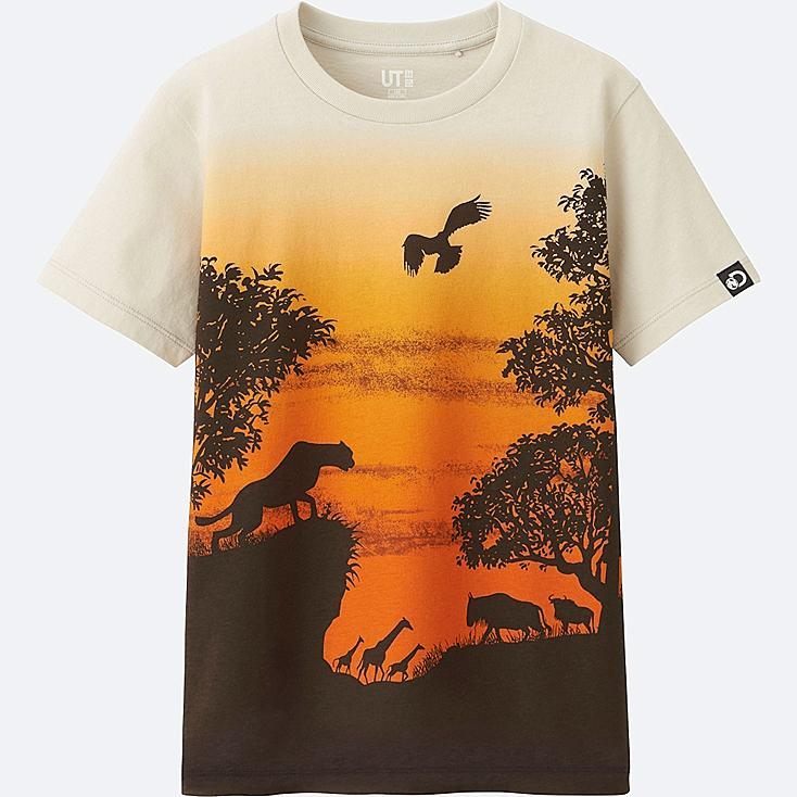 BOYS Discovery Channel Short Sleeve Graphic T-Shirt